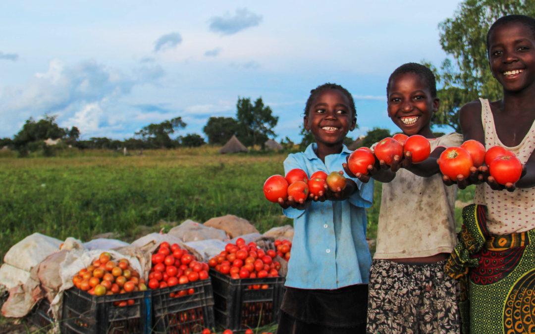 KickStart: Developing entrepreneurs and small-scale enterprises